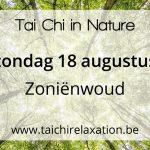 Tai Chi in Nature – Zoniënwoud
